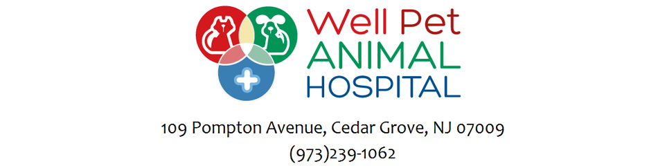 WELL PET ANIMAL HOSPITAL
